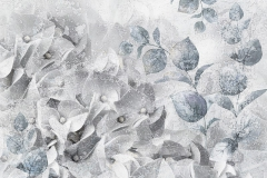 hydrangea flowers. light gray background. floral collage. flower composition. Close-up. Nature.