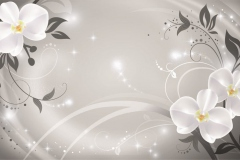 FLOWERS 3D