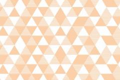 071001-Kopiowanie